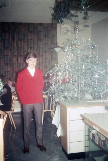 christbaum, feier, Lametta, lokal, Pullover, restaurant, Tannenbaum, Treffen, verkaufsvitrine, Weihnachten, Weihnachtsbaum, Weihnachtsfeier