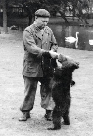 Bär, halten, schwan, stehen, Zoo