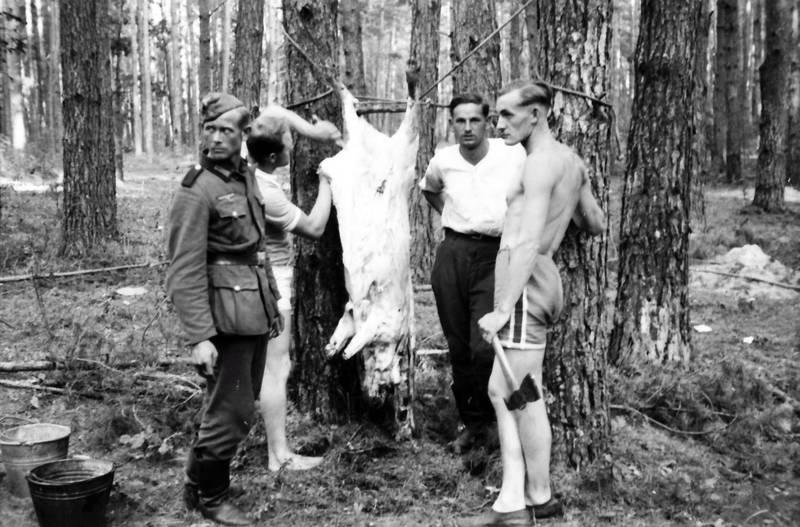 axt, Handaxt, Schwein, soldat, Uniform, Wehrmacht, zweiter weltkrieg