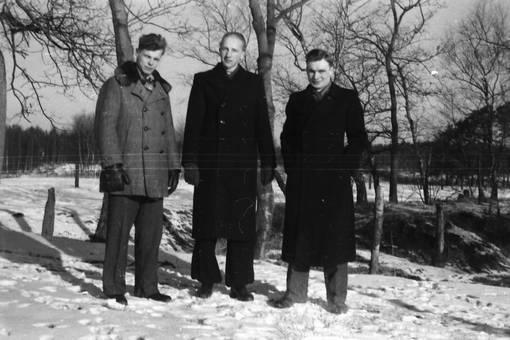 Drei Männer vor Bäumen