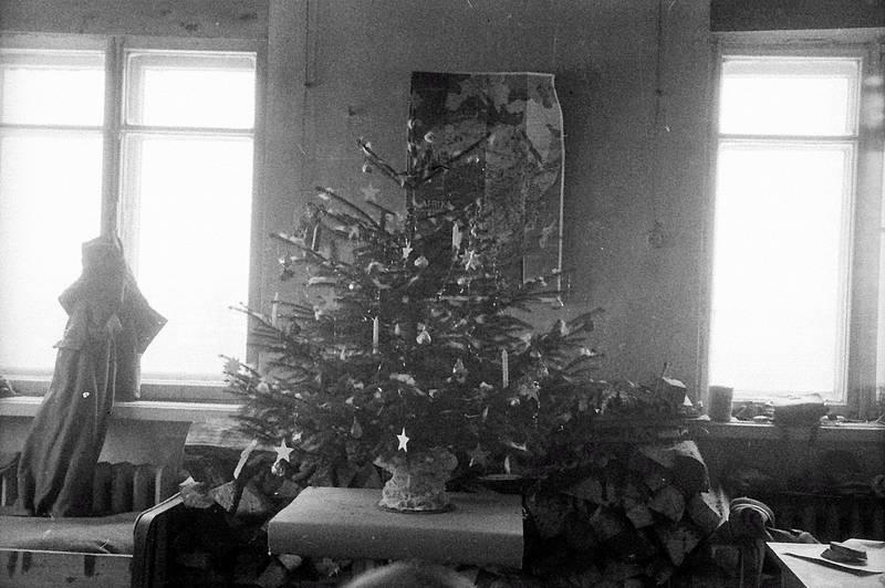 christbaum, Fenster, holz, Karte, Tannenbaum, Weihnachtsbaum