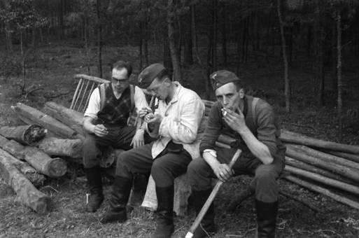 Rauchen im Wald