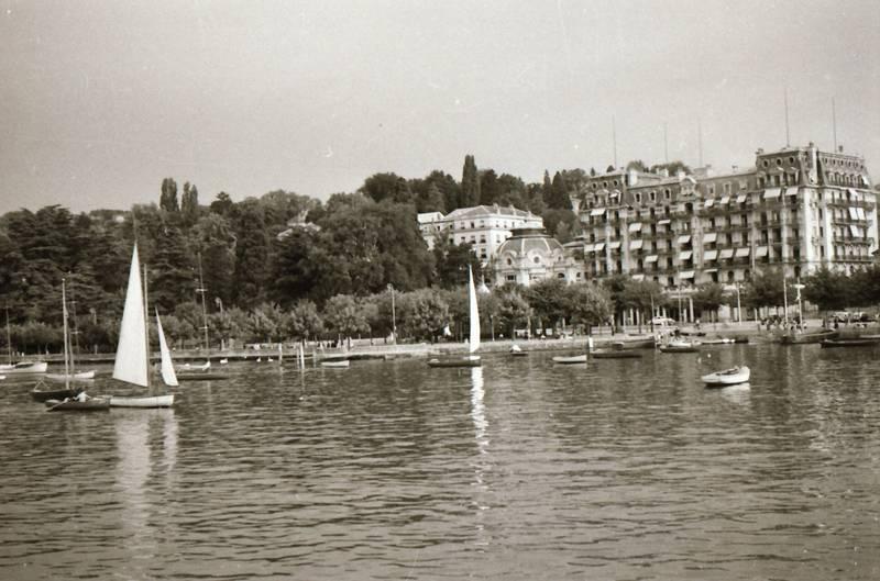 baum, Beau Rivage Palace, boot, Genfersee, gewässer, haus, lausanne, rotunde, Ufer