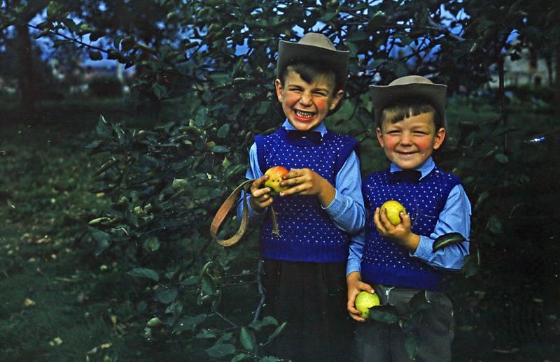apfel, Apfelbaum, cowboyhut, hut, Kindheit, Wiesloch