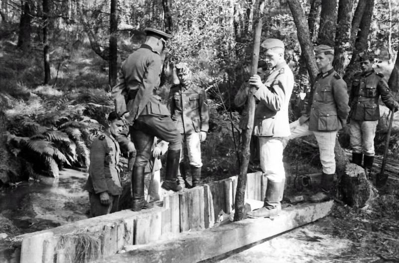 baum, soldat, Sonne, Sonnenschein, Uniform, weg, Wehrmacht, wehrmachtssoldat