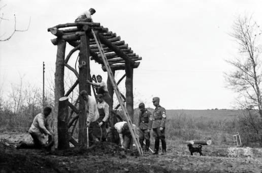 Holzgerüst aufbauen