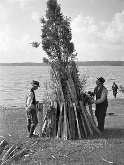 Holzscheite am Baum