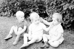 Drei Kinder auf einer Wiese