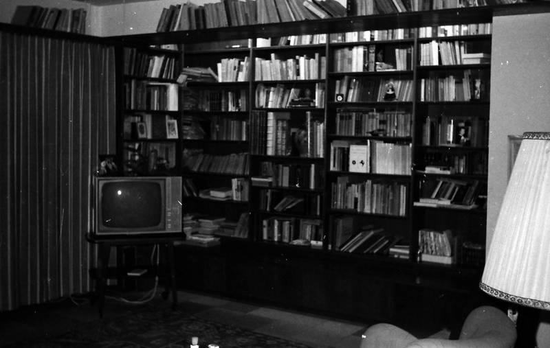 Buch, bücherregal, bücherwand, einrichtung, Fernseher, lampe, Möbel, schrank, Teppich, tv