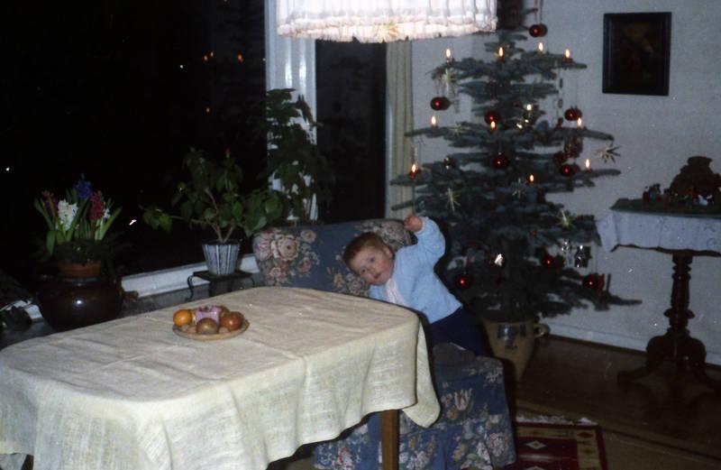 apfel, christbaum, Kindheit, Tanne, Tannenbaum, Teppich, tisch, Weihnachten, Weißnachtsbaum