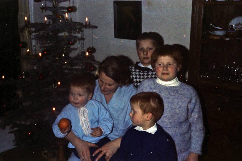 christbaum, familie, Geschwister, Kindheit, Mutter, regal, Tanne, Tannenbaum, Weihnachten, Weihnachtsbaum