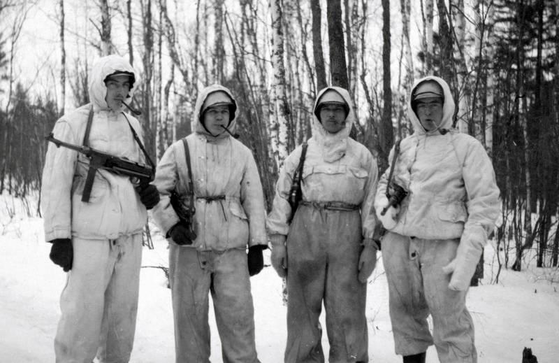 2. Weltkrieg, baum, Gewehr, Jacke, maschinenpistole, MP 40, Norwegen, pfeife, schnee, soldat, Uniform, Waffe, winteranzug