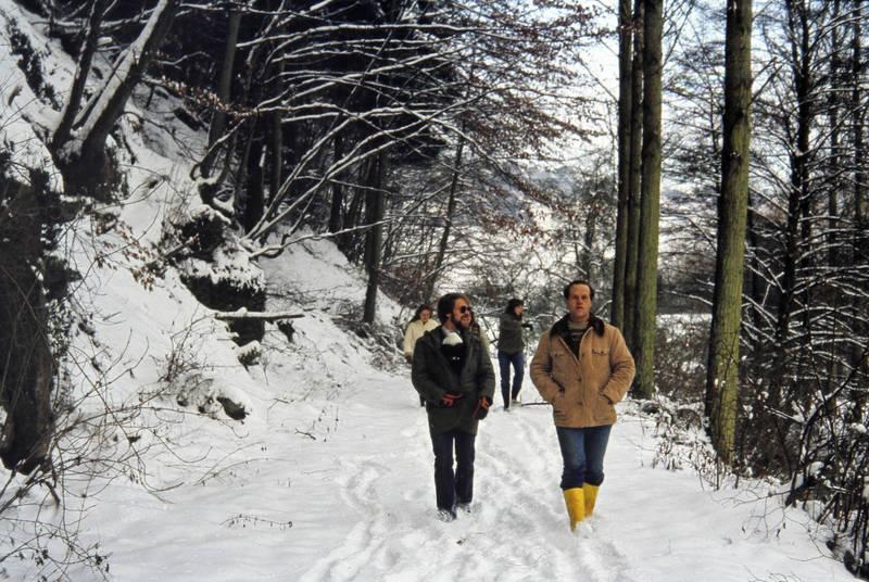 Gummistiefel, schnee, spaziergang, wald, winter