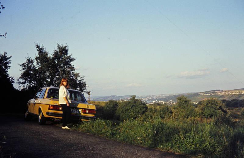 Ausblick, ausflug, auto, KFZ, Mercedes-Benz W 123, mercedes-w123, PKW, wiese