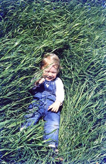 gras, Kindheit, wiese