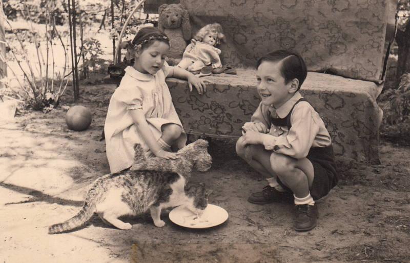 ball, Geschwister, Katze, Kindheit, stofftier, Teddy