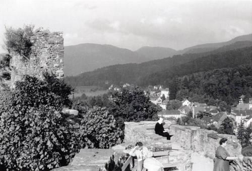 Ausblick von der Burgruine