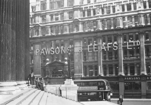 Pawsons & Leafs Ltd.
