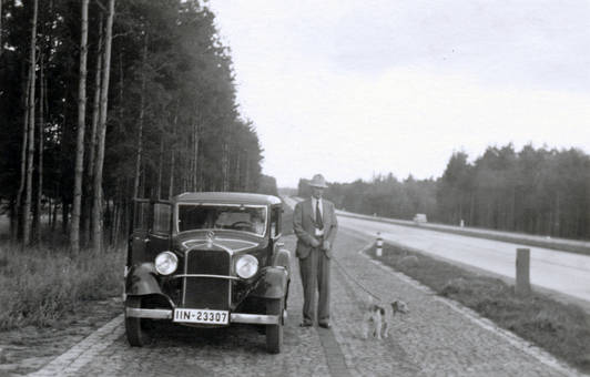 Neben dem Auto mit Hund
