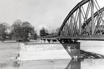 Zug auf der Brücke