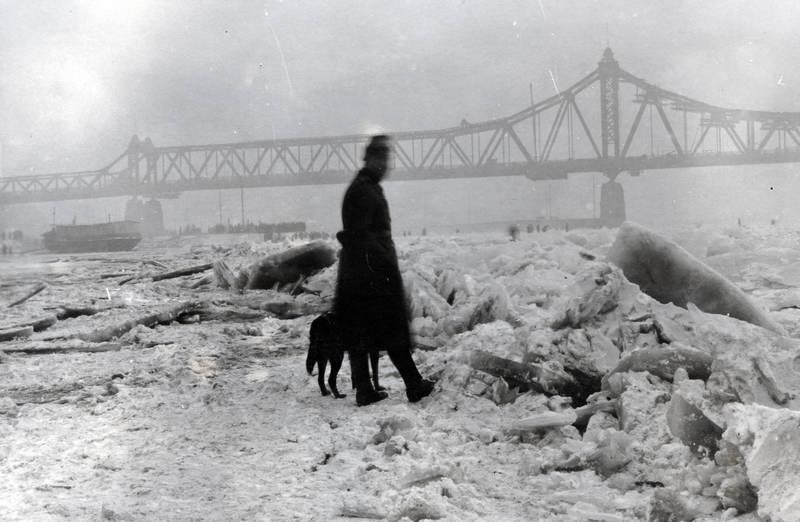 brücke, Eis, gefroren, Homberg, hund, Rhein, Rheinbrücke, Ruhrort, schiff, schnee