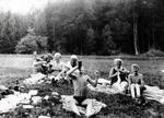 Picknick auf der Waldwiese