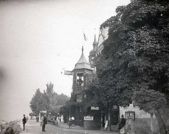 Assmannshausen, baum, Friseur, gebäude, haus, Hotel Krone, Ufer