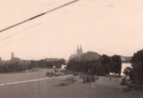 Im Rheinpark zu Köln