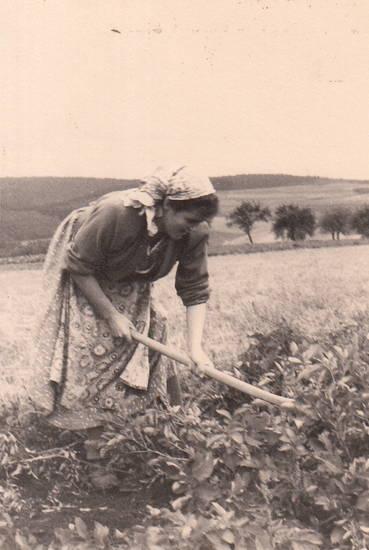 arbeit, Bauernhof, Feldarbeit, Landwirt, Landwirtin, Landwirtschaft