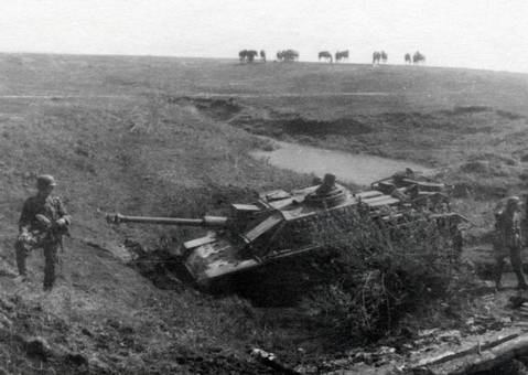 Panzer im sumpfigen Gelände