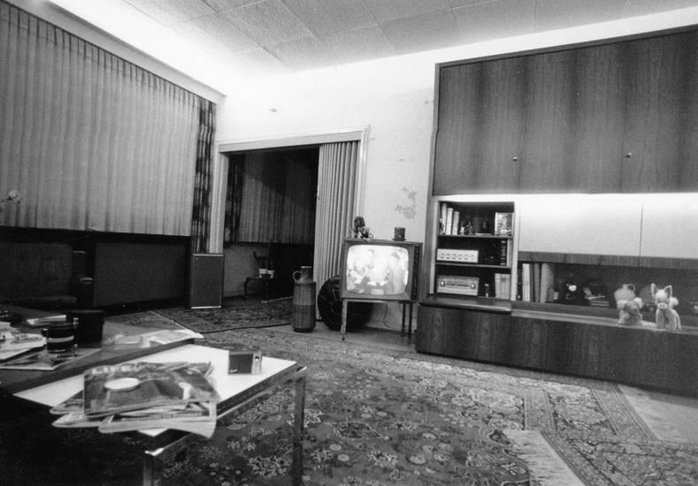 einrichtung, fernsehen, Fernseher, gerät, Kaffeetisch, Möbel, möbliert, möblierung, Muster, schrank, Teppich