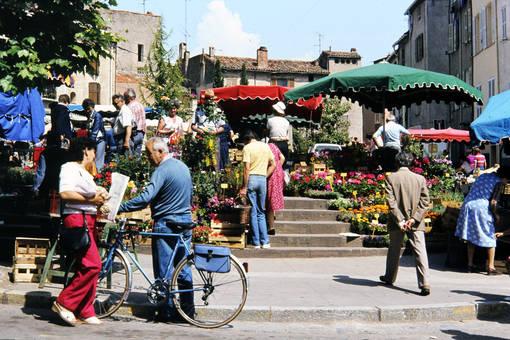 Blumenhändler in Fréjus