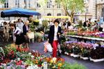 Beim Blumenhändler