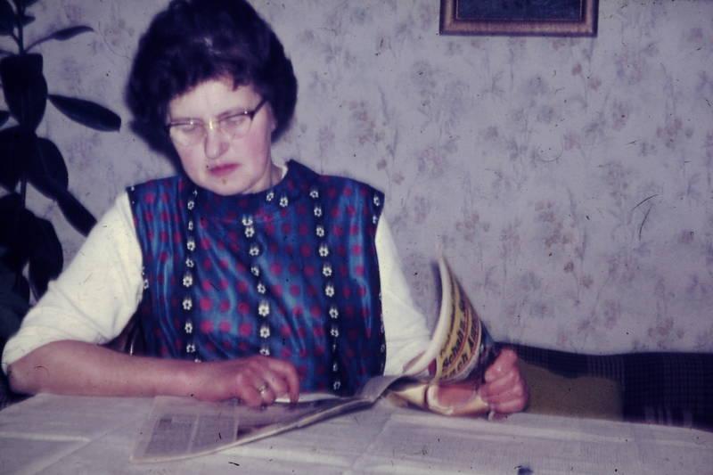 Brille, lektüre, schürze, Zeitschrift