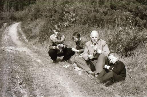 Picknick am Wegrand
