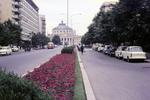 Straße mit Blumenbeet