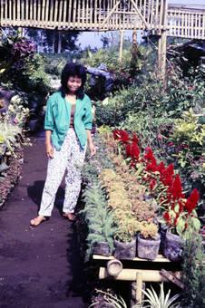 Bei Pflanzen und Blumen