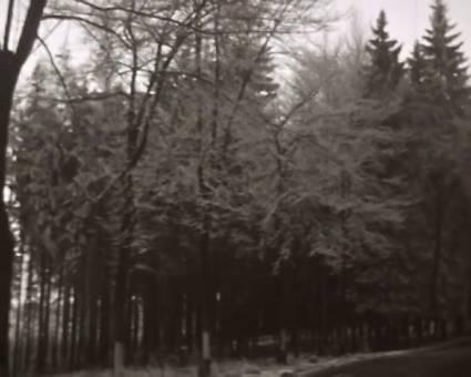 Schneespaziergang 1939