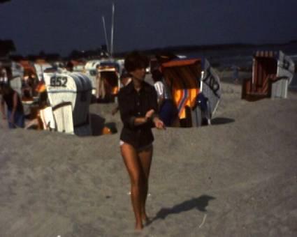Schutzwall am Strand