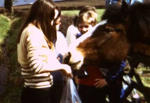 Ausritt mit dem Pferd