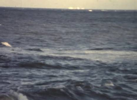 Spazieren am Meer