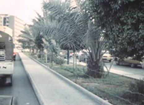 Autofahrt in Riad