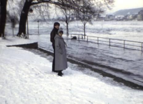 Hochwasser in Mehlem