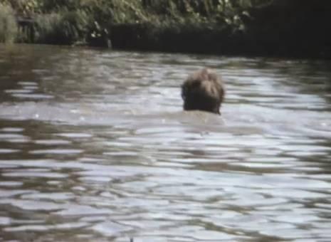 Filmen im Wasser