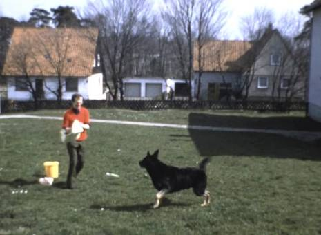 Hundewäsche