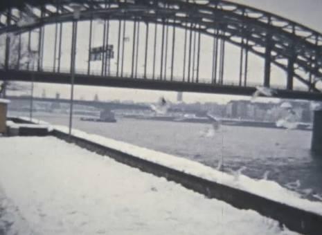 Schnee im Rheinpark Köln-Deutz