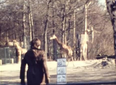 Zoo Gelsenkirchen