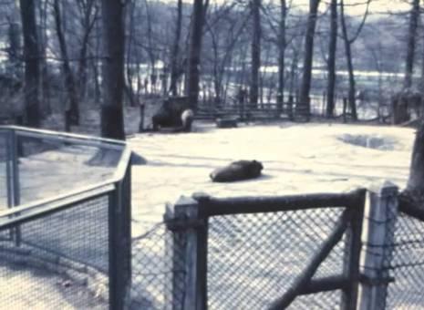 Tierpark Dortmund