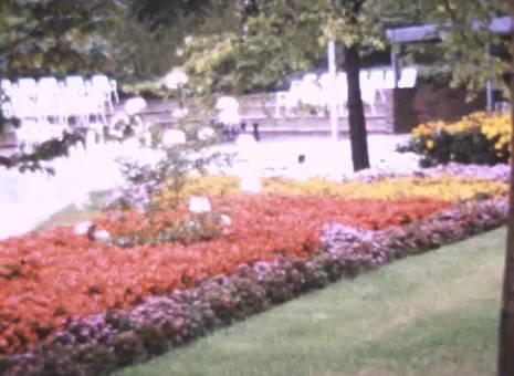 Im Westfalenpark