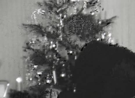 In der Weihnachtszeit